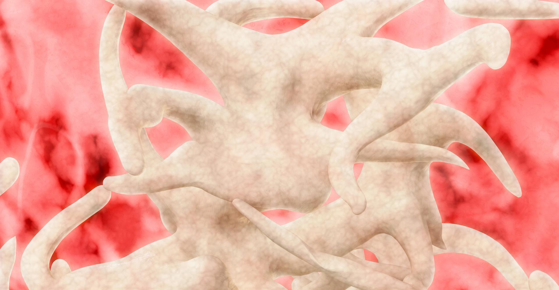 Verspannt? Faszien – neue Wege in der Körperarbeit!